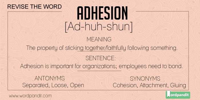 Synonyms-Antonyms-Meaning for Adhesion