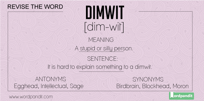 Synonyms-Antonyms-Meaning-dimwit